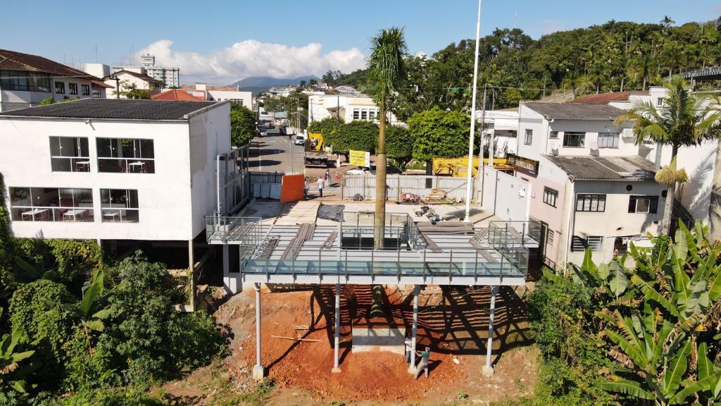 Palmeira real sendo transportada - Prefeitura de Gaspar/SC