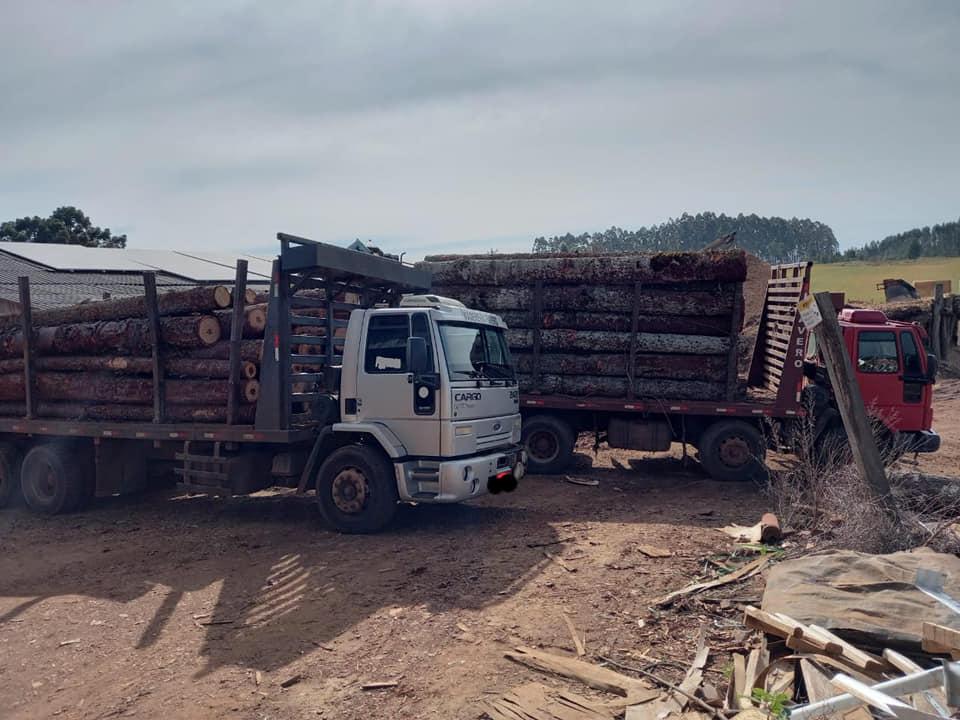 A PMA constatou que havia um caminhão carregado de madeira nativa sem qualquer documentação. - Polícia Militar Ambiental/Divulgação/ND