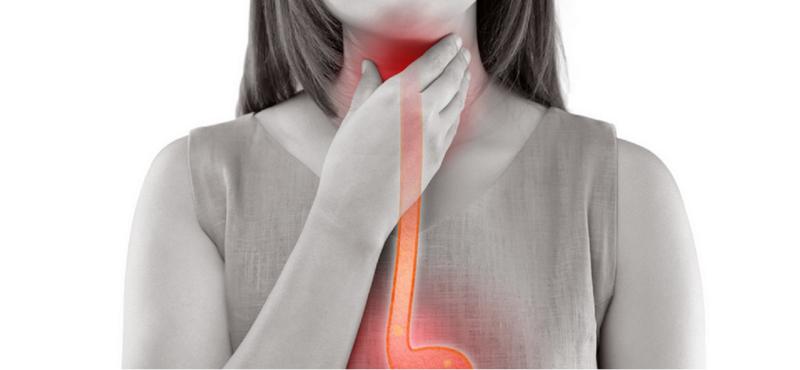 O esôfago é um tubo que liga a garganta ao estômago – Foto: Divulgação