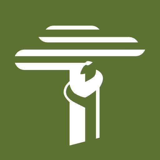 Dia Mundial do Meio Ambiente: conheça ONGs de preservação da natureza - Foto: Divulgação/Busca voluntária/ND
