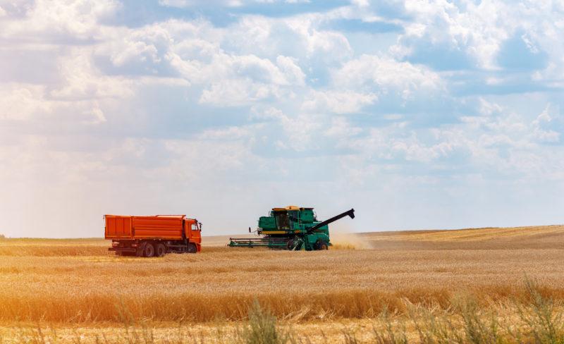 A agropecuária é um dos setores mais fortes de Santa Catarina, representando 25% de seu PIB – Foto: Divulgação