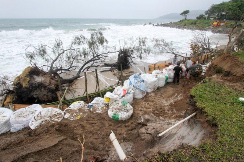 Árvores, postes, muros e deques das casas foram levados pela maré alta no Morro das Pedras – Foto: Leo Munhoz/ND