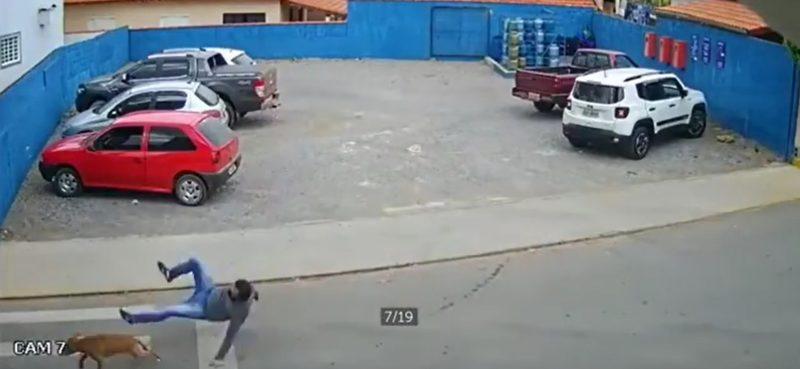 Flagrante aconteceu no domingo (6) e vídeo viralizou nas redes sociais – Foto: Reprodução/ND