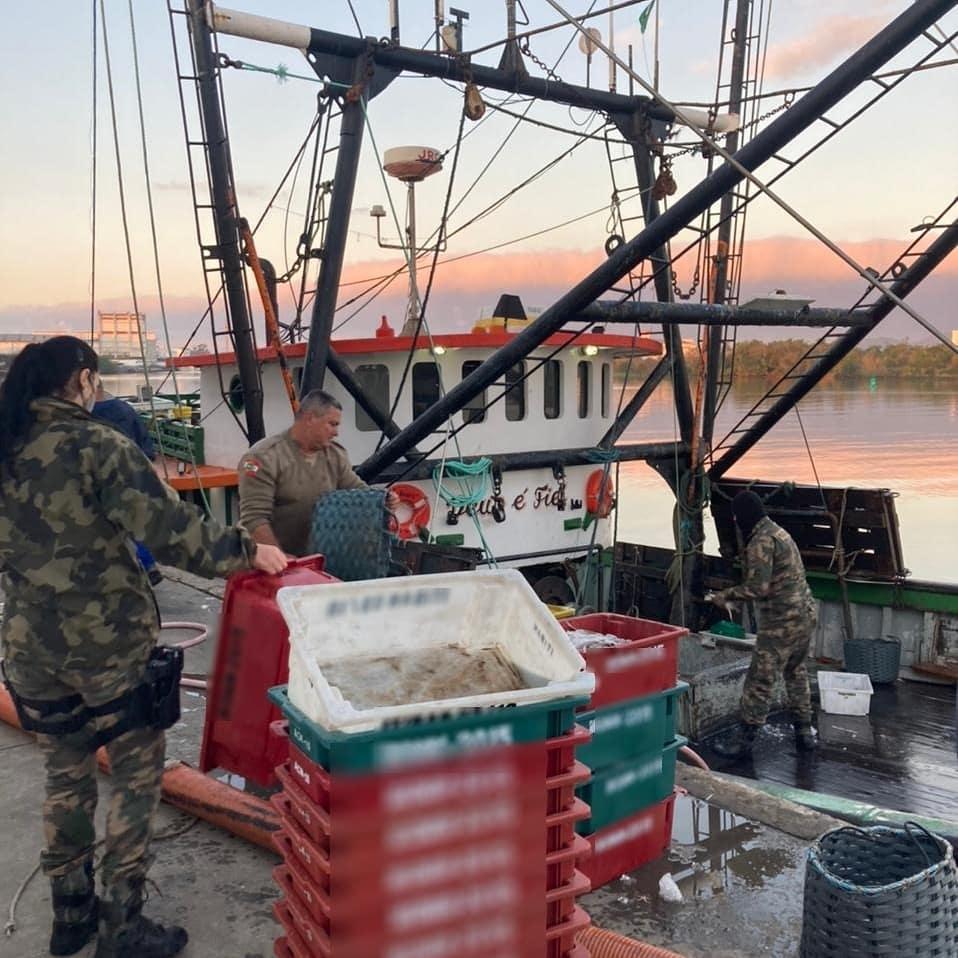 O pescado foi destinado para as entidades beneficentes da região, conforme previsto na legislação - PMSC Ambiental/Divulgação