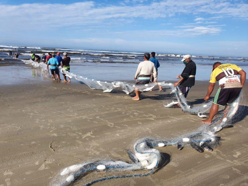 Foram pescados cerca de 10 toneladas de tainha no Balneário Rincão – Foto: Prefeitura de Balneário Rincão/ND