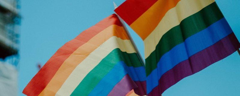 10 influenciadores para seguir no Mês do Orgulho LGBT - daniel james on Unsplash