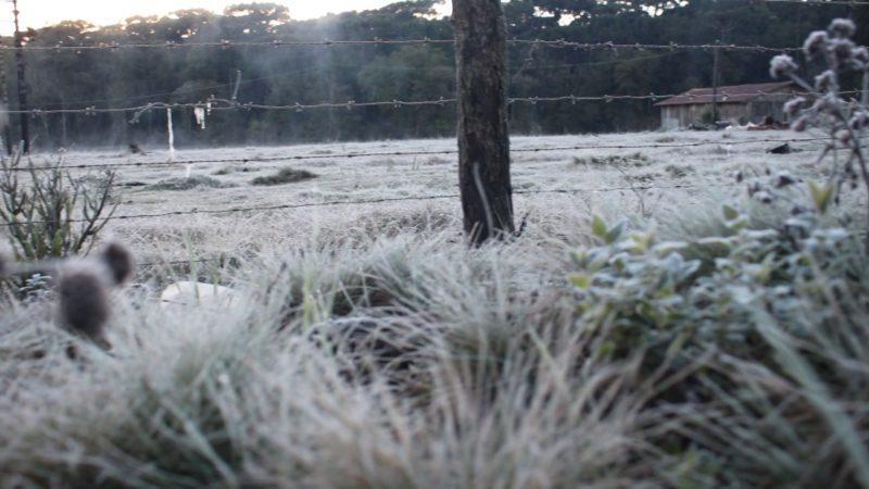 Temperaturas vão cair com onda de frio extremo em SC – Foto: Luiz Felipe Marschalk/JMais