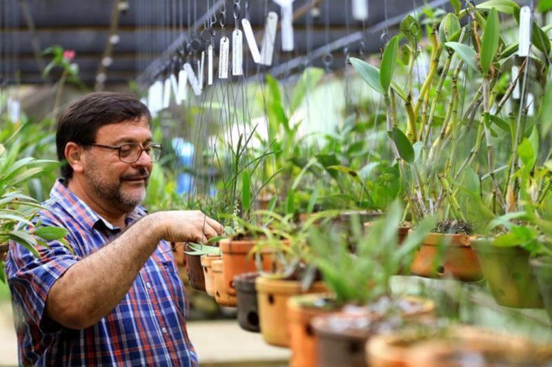 Marcelo Vieira Nascimento verificando o orquidário – Foto: Divulgação/ND