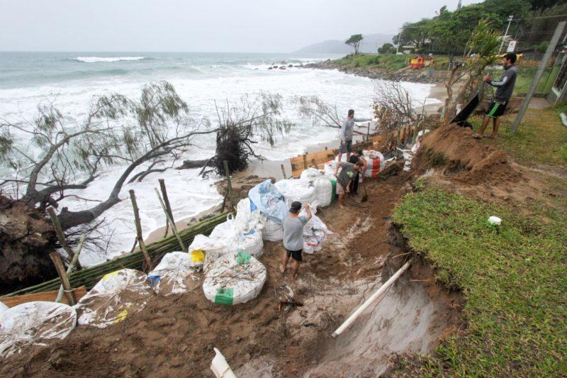 Trincheira com geobags de areia aumenta a proteção das casas sob risco no Morro das Pedras – Foto: Leo Munhoz/ND