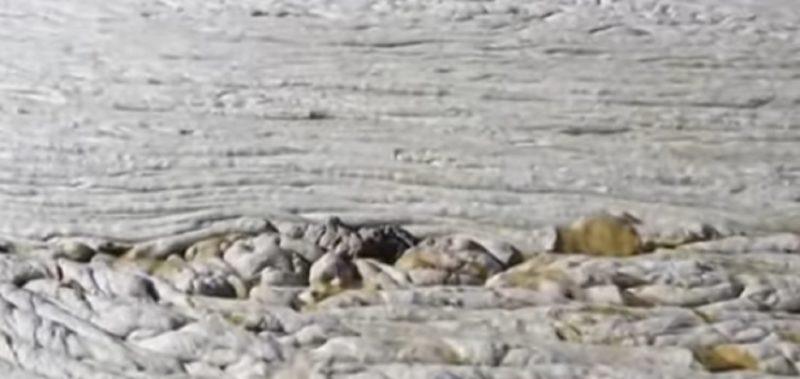 Muco no mar da Turquia mata peixes por asfixia – Foto: Reprodução / Youtube