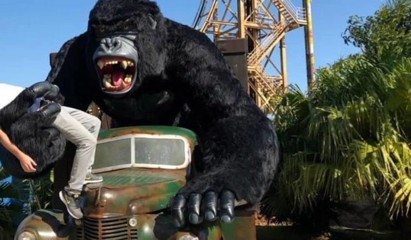 Criança caiu de estátua de gorila que tem aproximadamente 4 metros – Foto: Reprodução/ND