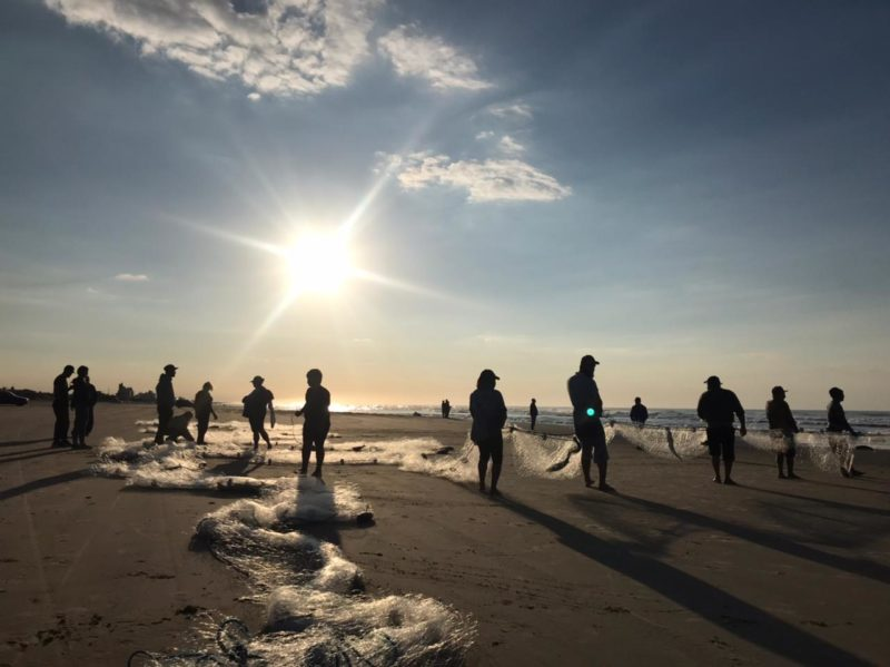 Em Balneário Rincão, região Sul do Estado, pescadores comemoraram a captura de tainha pela segunda manhã seguida. Nesta quarta-feira (2), a safra já havia sido generosa – Foto: Leandro Silva/Divulgação/ND
