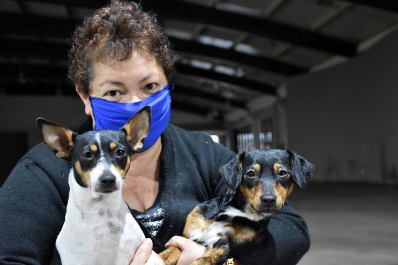 Inicia cadastramento para castração de animais em São Lourenço do Oeste – Foto: Prefeitura de São Lourenço do Oeste/Divulgação/ND