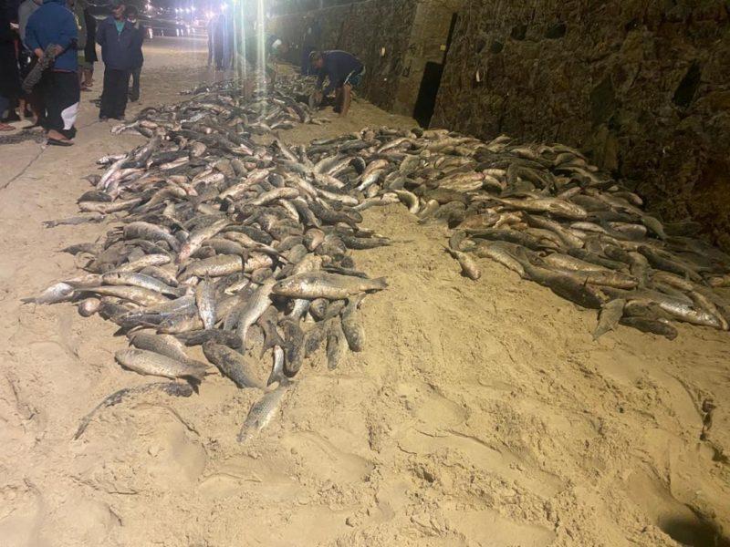 Pescadores madrugaram para o primeiro lanço desta sexta