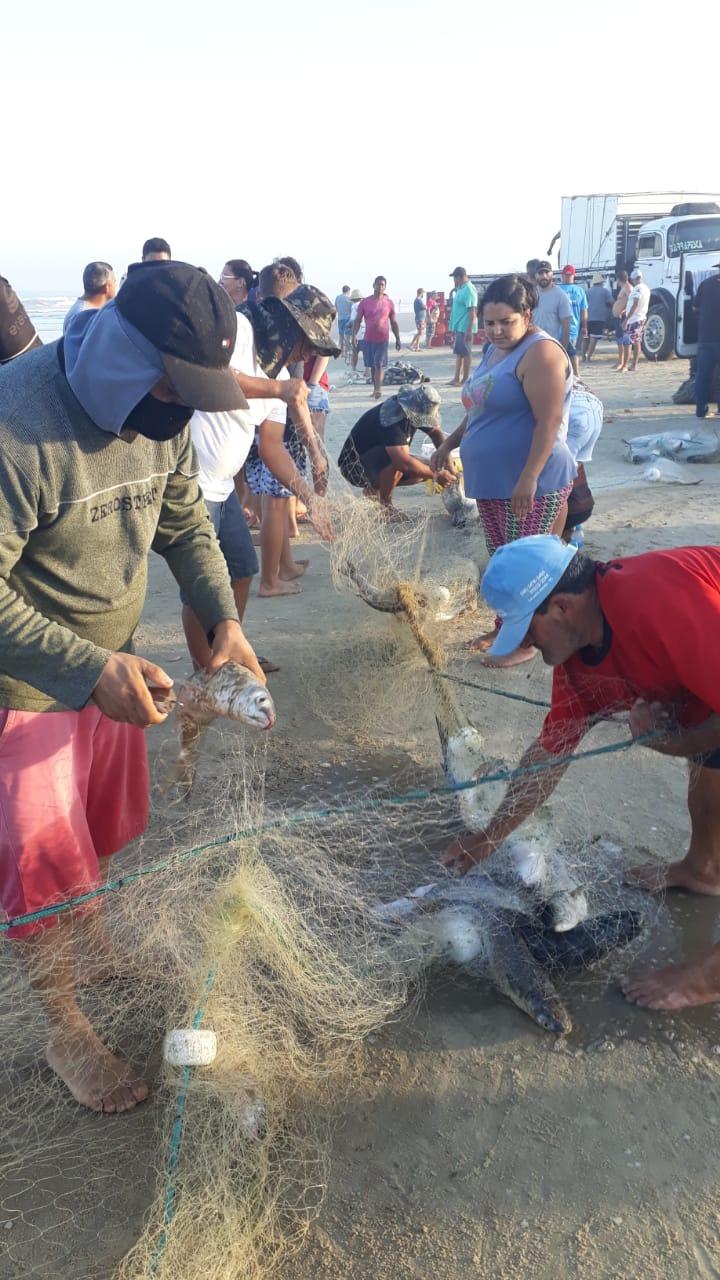 Pesca da tainha em Balneário Rincão - José Adilio/Rádio Nova Cidade