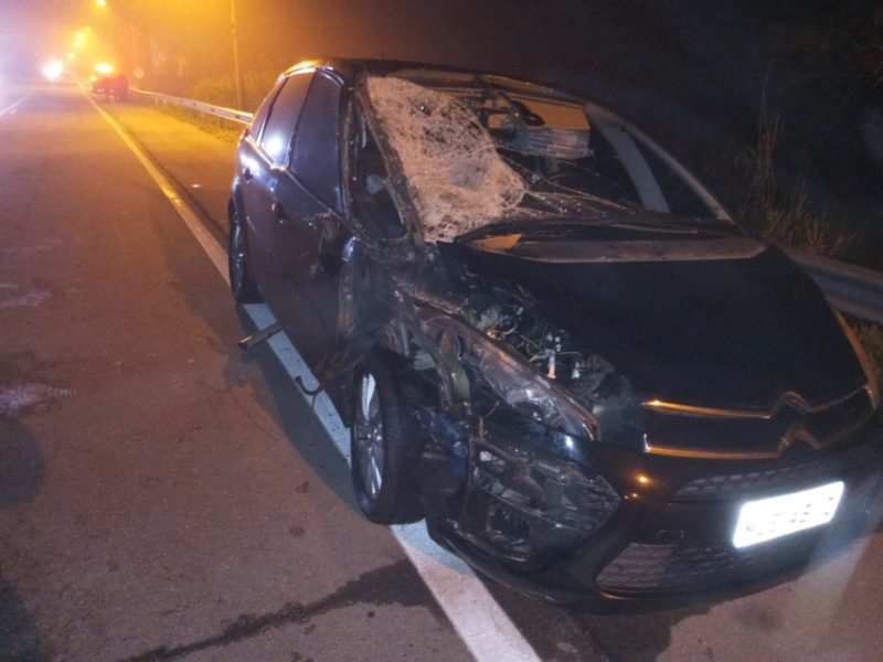 Apesar do estrago, passageiros do carro não tiveram ferimentos