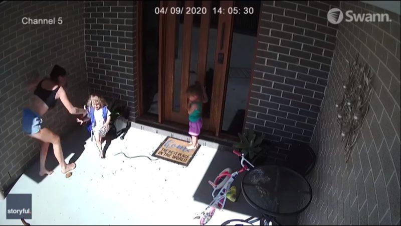 Mulher passou momentos de tensão com o animal na porta de casa – Foto: Storyful/Reprodução