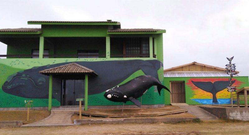 A sede do Instituto Australis possui um deque de observação e ensina os visitantes sobre as baleias-francas – Foto: Divulgação/ Instituto Australis/ ND