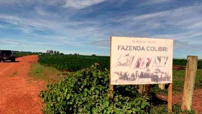 Imóveis e fazendas apreendidos pela justiça vão a leilão – Foto: Poliana Mikejevs/Ministério da Justiça/Divulgação/ND