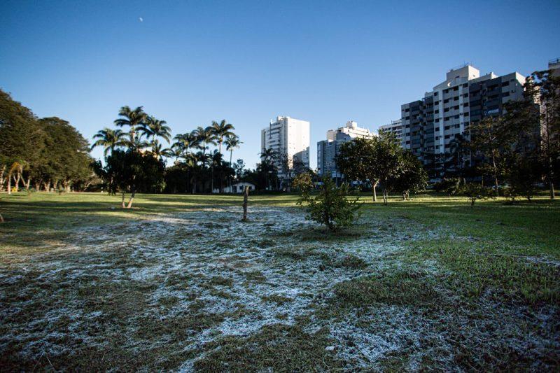 Jardim Botânico, no bairro Itacorubi, em Florianópolis – Foto: Felipe Carneiro/Especial para ND