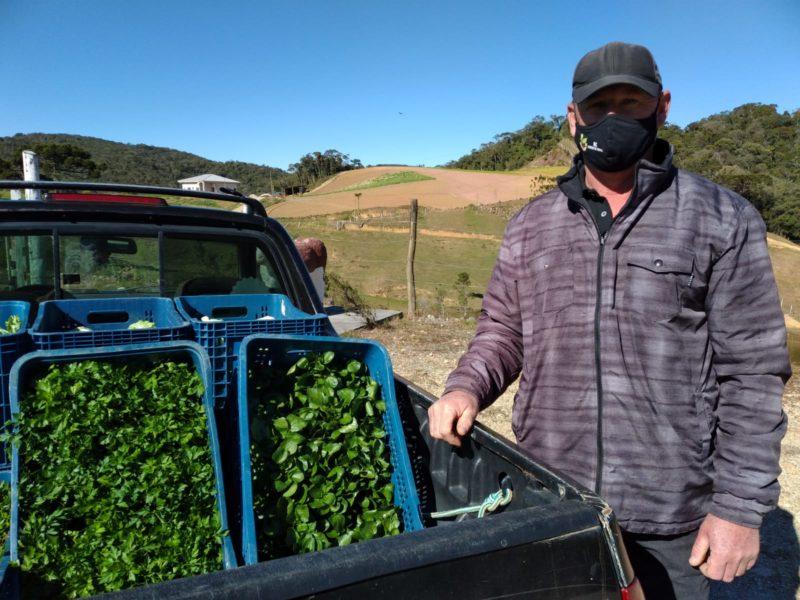 Agricultores se defendem com aminoácidos e outros truques nas geadas