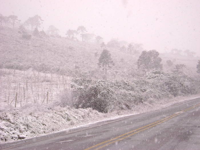 Nevasca preencheu novamente os morros de Santa Catarina nesta última semana congelante – Foto: Reprodução/ND