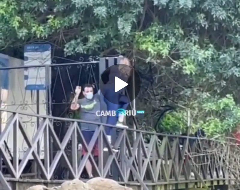 Pessoas pulam deck para acessar elefante-marinho em BC – Foto: Camboriú News