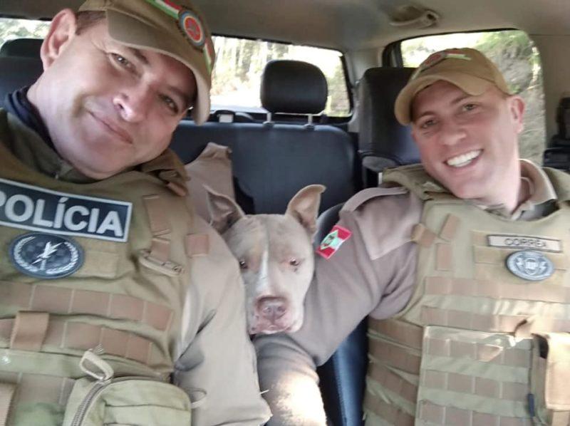 Agentes com o cachorro