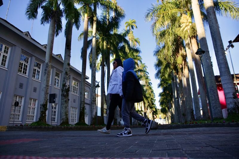 rua das palmeiras, joinville
