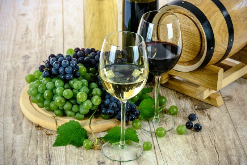 Vinhos serranos e do Meio-Oeste de Santa Catarina são contemplados pela rota turística – Foto: Pixabay/Divulgação/ND