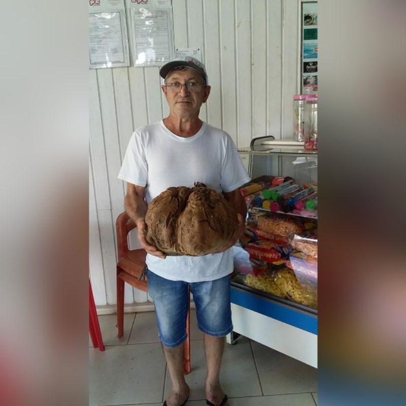 O tamanho da batata-doce pegou todos de surpresa. – Foto: Arquivo Pessoal/Divulgação/ND