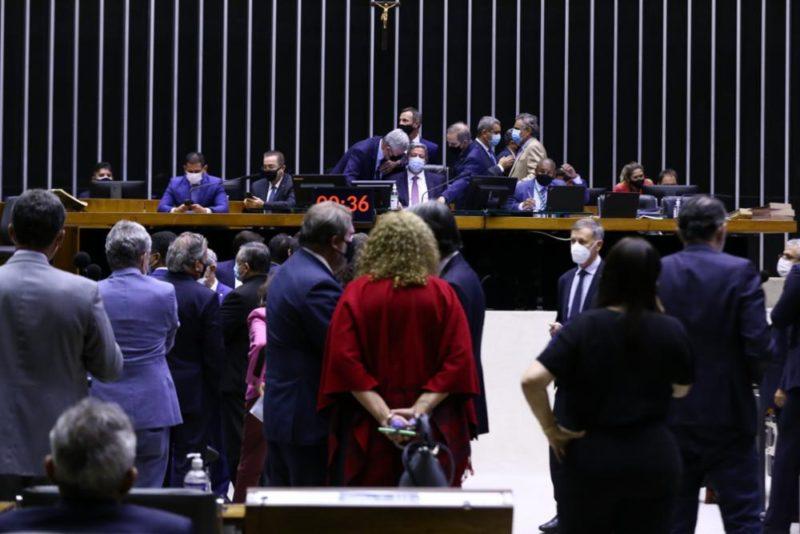 Depoutados em sessão da Câmara – Foto: Cleia Viana/Câmara dos Deputados/Divulgação/ND