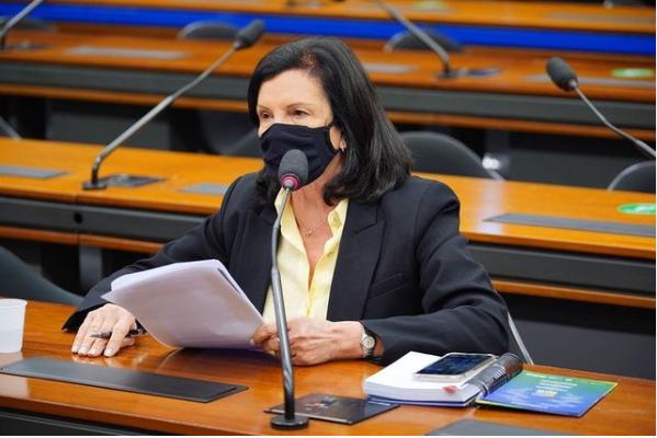 Deputada Angela Amin esteve entre os dois deputados catarinenses que votaram contra o voto impresso – Foto: Reprodução/ND
