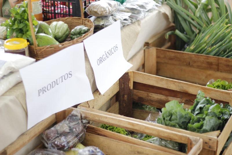 Produtos direto do produtor ao consumidor na porta da prefeitura em Criciúma. – Foto: Divulgação
