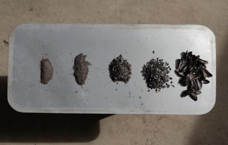 Matéria prima da Casca Sururu – Foto: Portobello/Divulgação