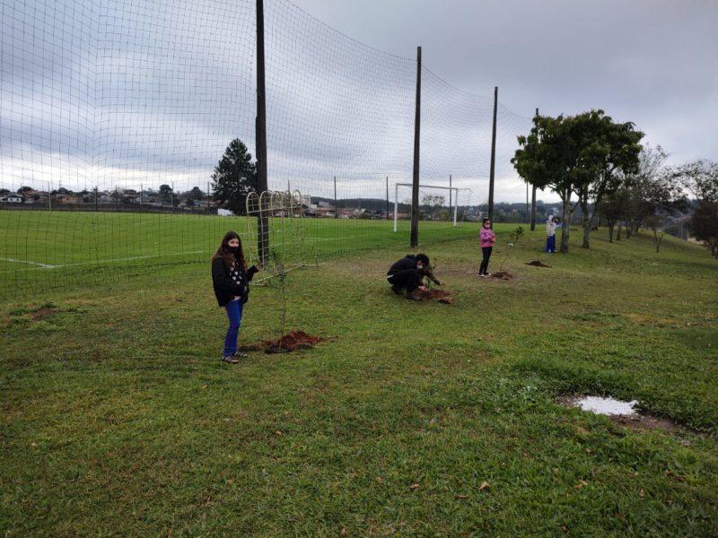 Os alunos fizeram o plantio de árvores em alusão ao Dia do Combate à Poluição. – Foto: Divulgação.