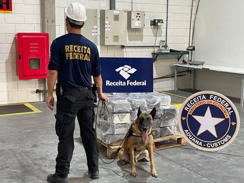 Enzo, o cão de faro da Receita Federal, ajudou na apreensão. – Foto: Receita Federal/Divulgação ND