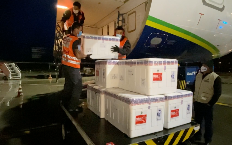 Imunizantes serão distribuídos entre os municípios nesta semana – Foto: DIVE/Divulgação/ND