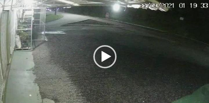 Adolescente perdeu o controle da motocicleta e voou sobre o canteiro – Foto: Internet/Reprodução/ND
