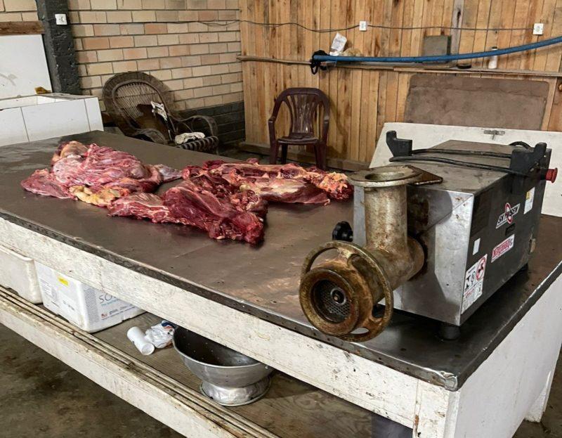 A carne supostamente de cavalo ou mula foi apreendida em processo de moagem para distribuição no mercado da região. – Foto: Divulgação