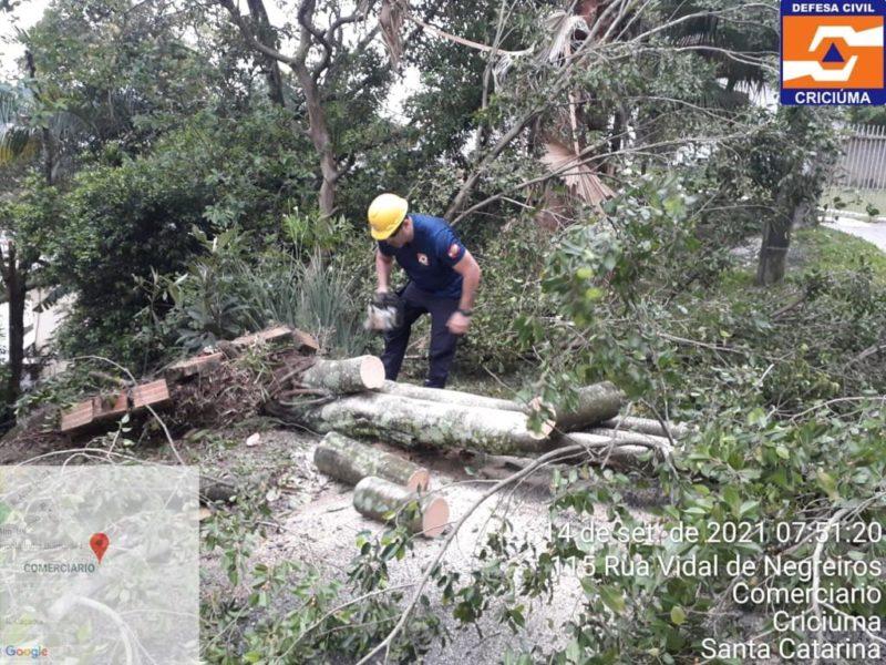 Ao menos quatro casas foram destelhadas e diversas quedas de árvores foram registradas em Criciúma – Foto: Divulgação/Defesa Civil
