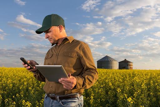 O objetivo é criar uma estrutura dedicada para acelerar os avanços nas granjas e dar suporte ao integrado na gestão de recursos do negócio – Foto: Divulgação